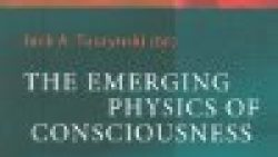 The Emerging Physics of Consciousness (The Frontiers Collection)