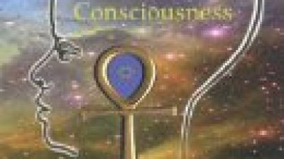 COSMOS AND CONSCIOUSNESS: Quantum Computers, SuperStrings,  Programming, Egypt, Quarks, Mind Body Problem, and Turing Machines (Volume 2)