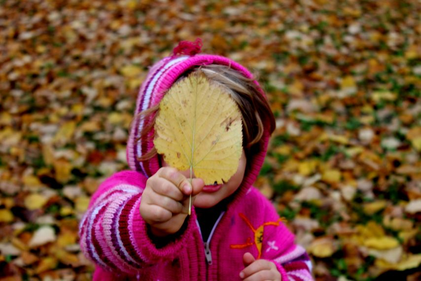 Boy holding fall leaf