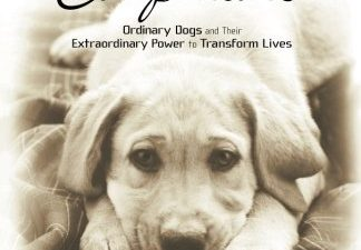 Healing Companions: Ordinary Dogs and Their Extraordinary Power to Transform Lives
