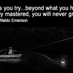 Unless you try beyond what you have already mastered, you will never grow